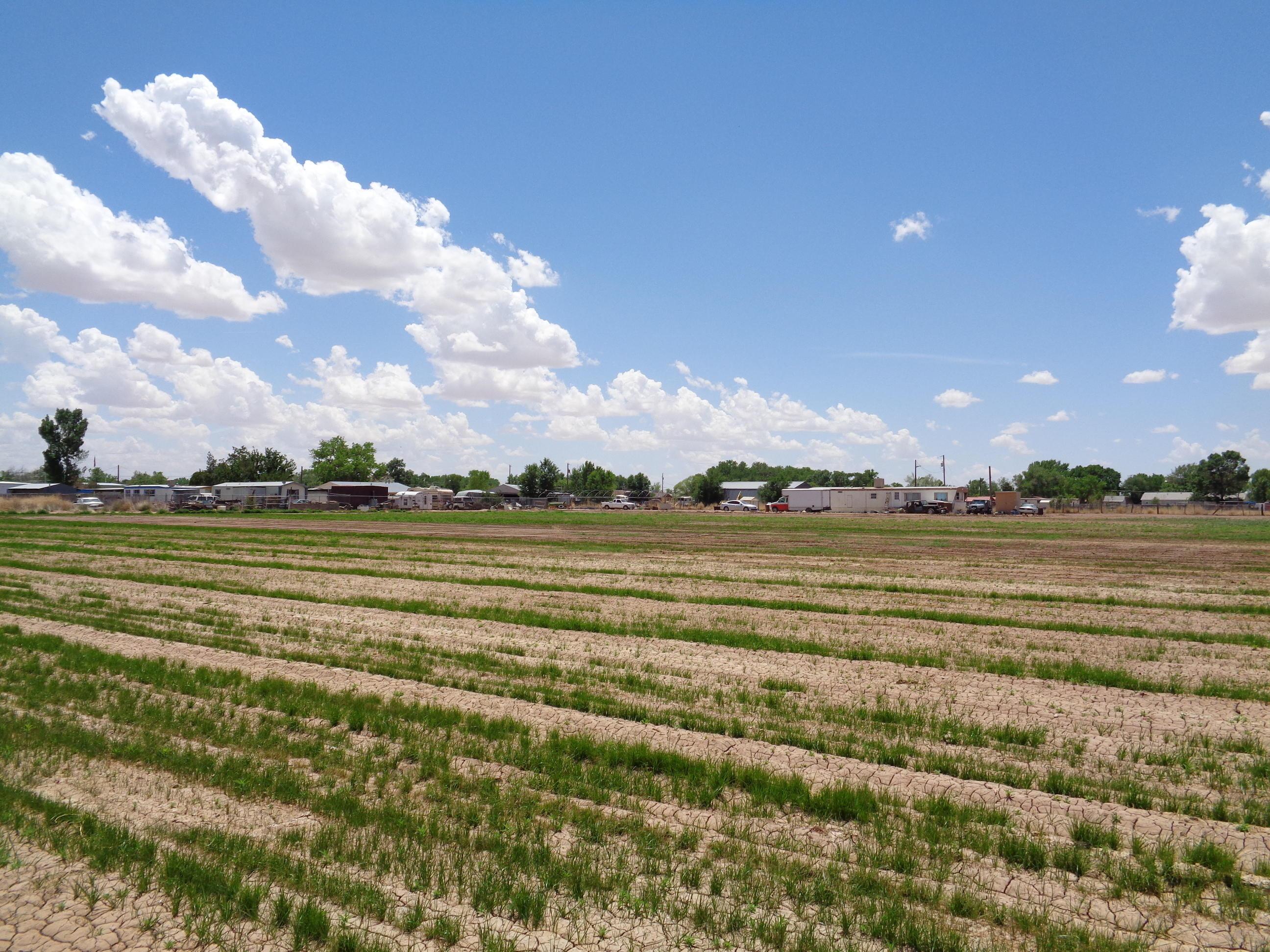 Land Of Leroy Silva Real Estate Listings Main Image