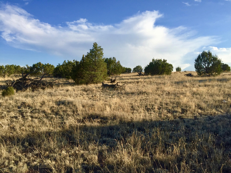 195 Campfire Road Property Photo