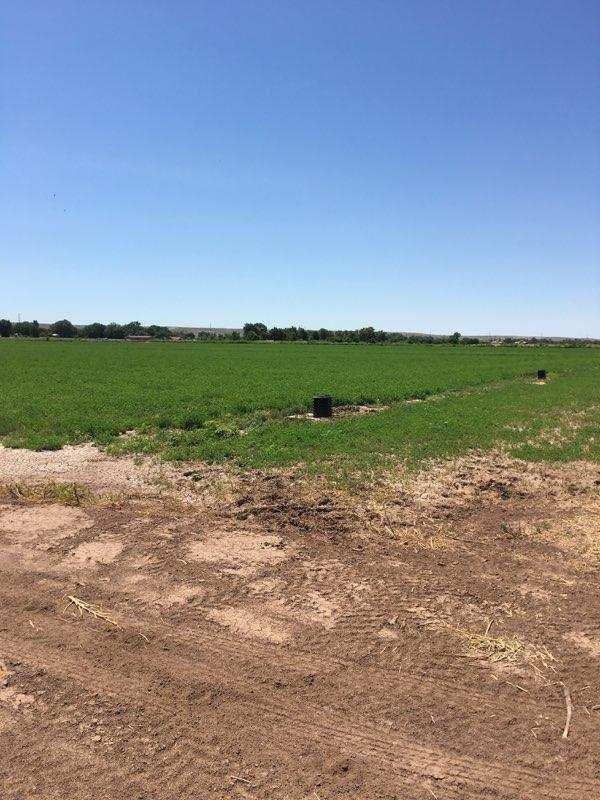 Marquez Road Property Photo 10