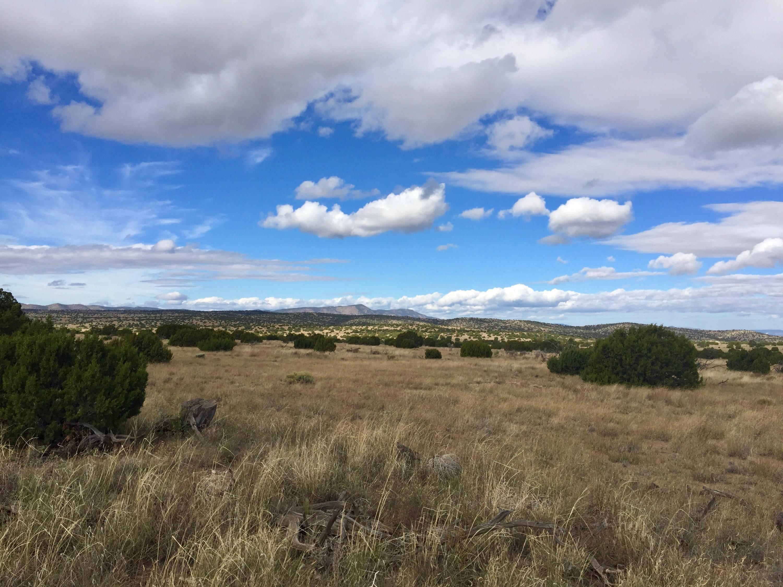 58 Pinon Springs Ranches Property Photo
