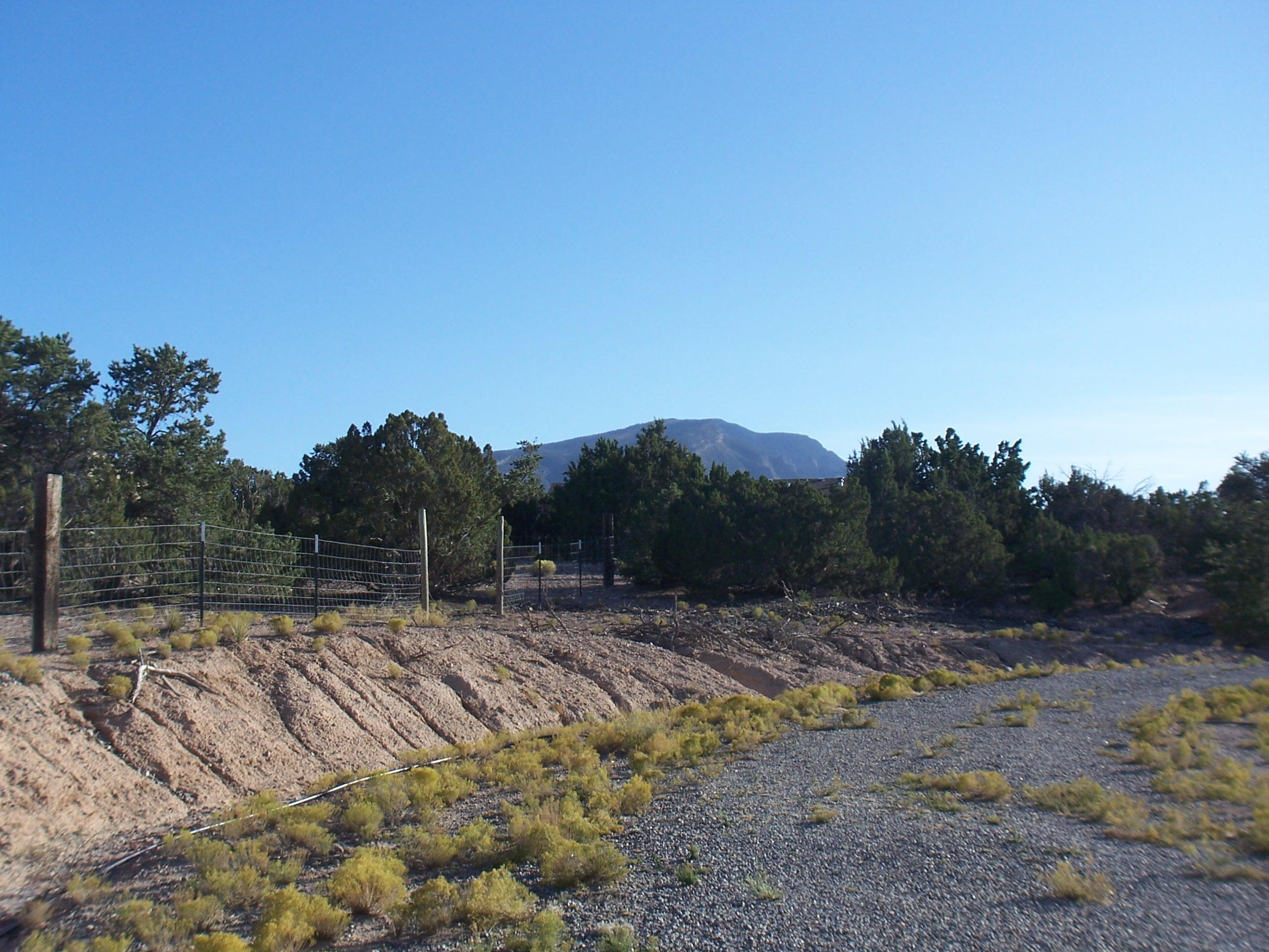 Lands Of William C. & Dorothy M. Colborne Real Estate Listings Main Image