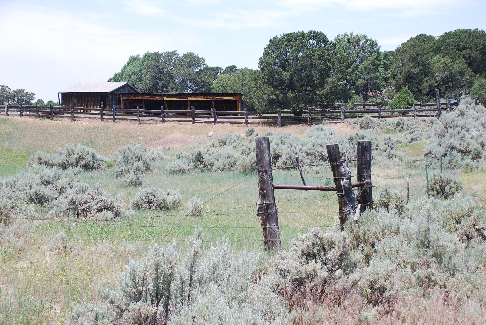 933 Bear Paw Rd., Bear Paw Ranch Property Photo 8