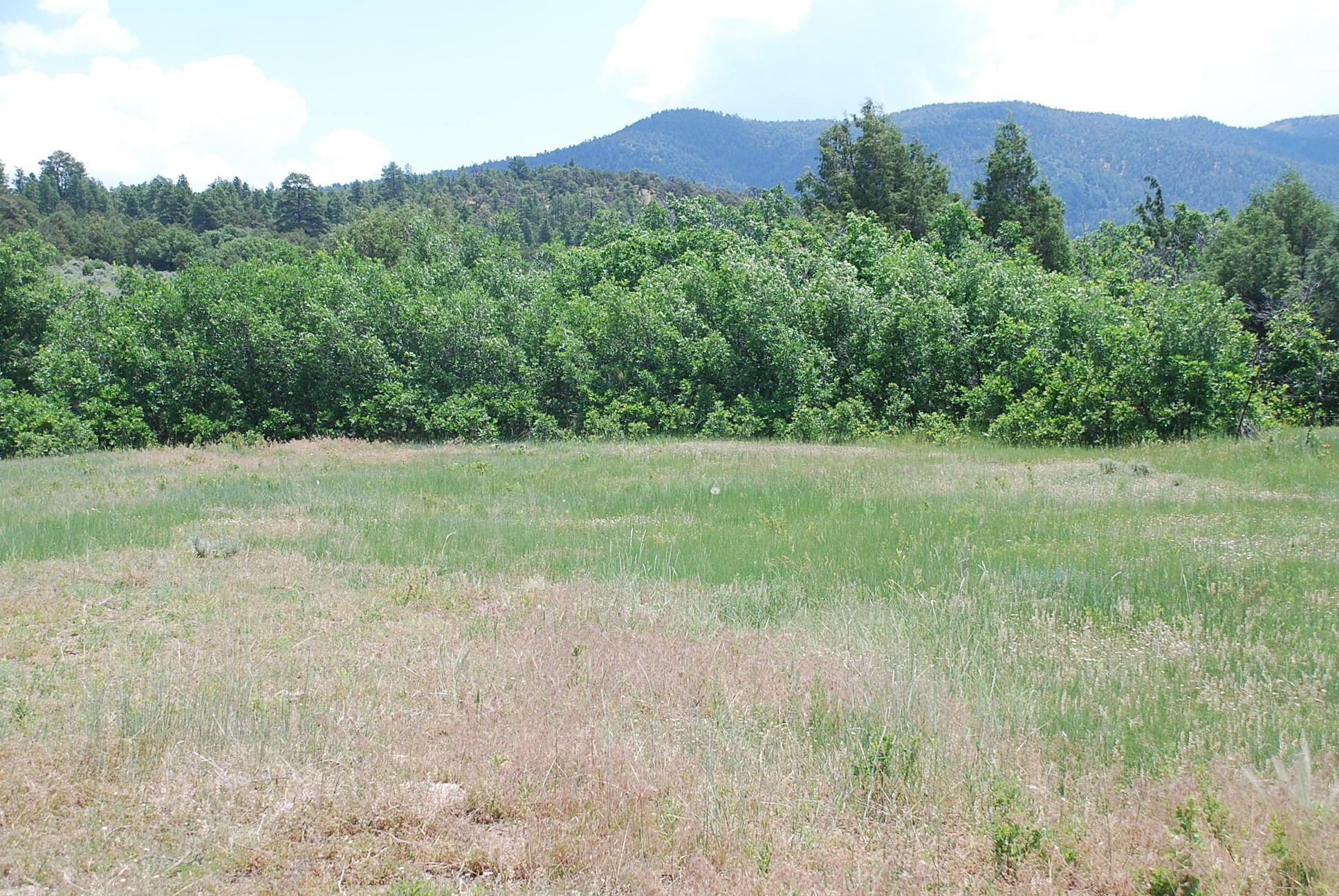 933 Bear Paw Rd., Bear Paw Ranch Property Photo 13