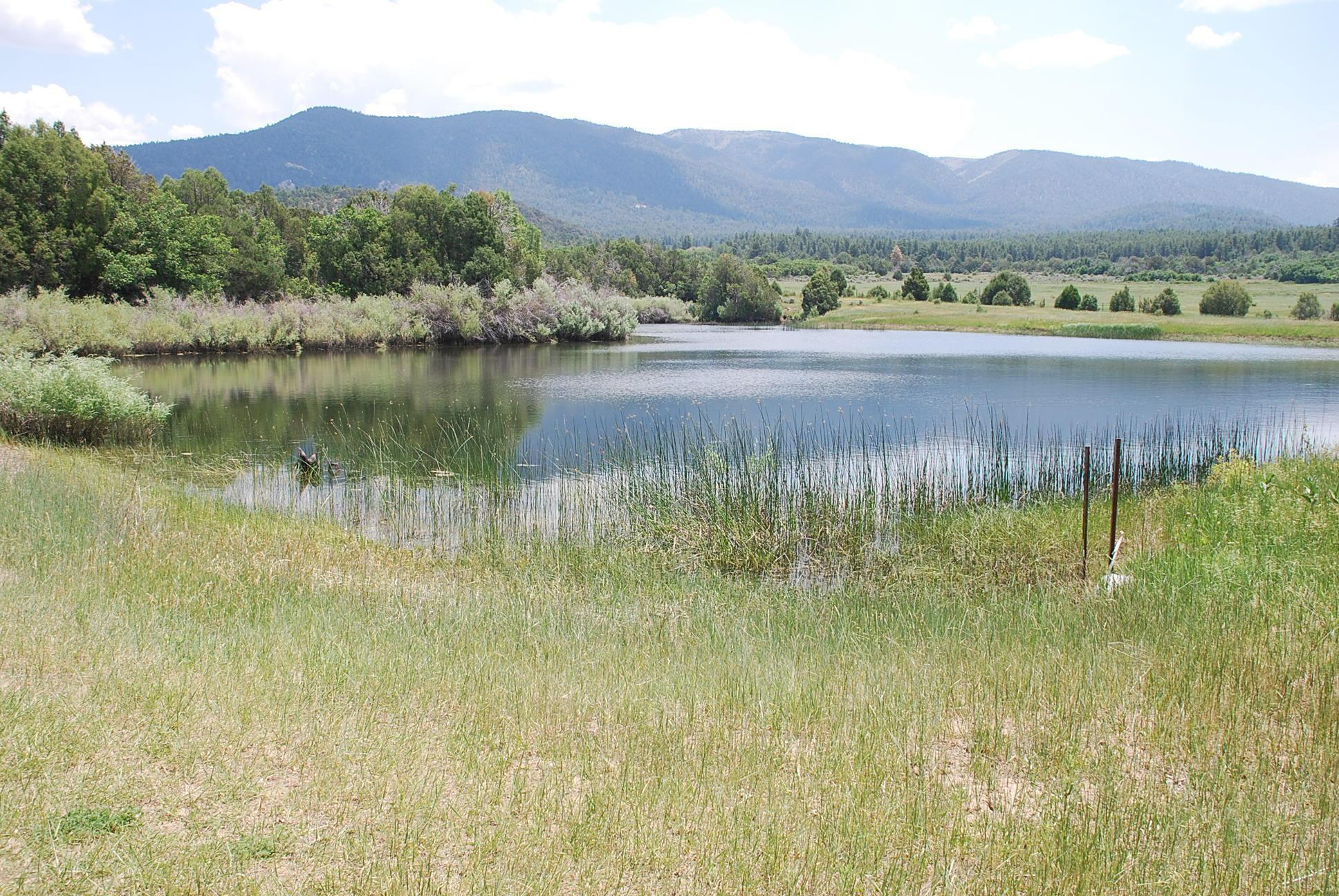 933 Bear Paw Rd., Bear Paw Ranch Property Photo 24