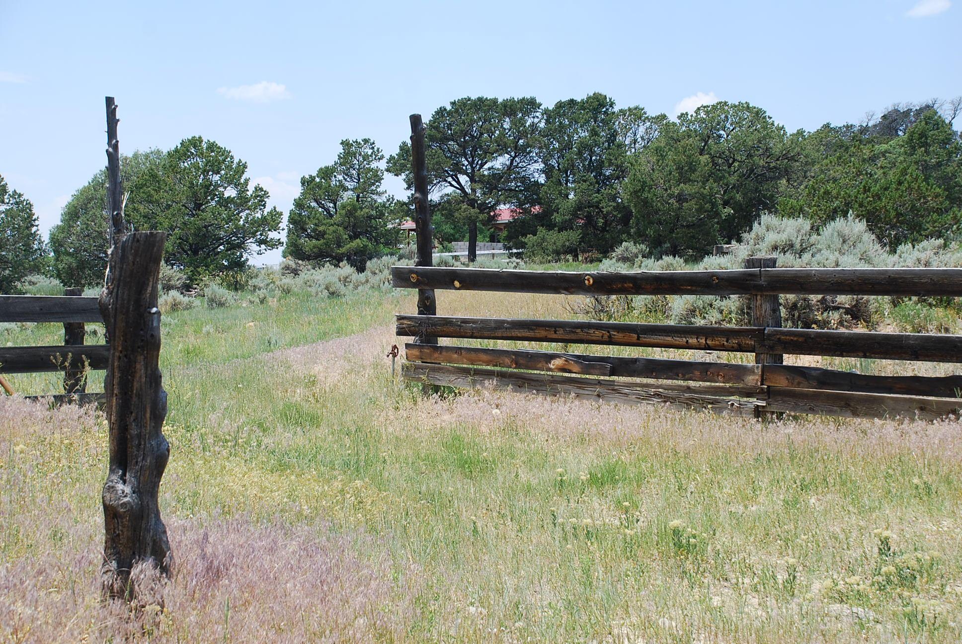 933 Bear Paw Rd., Bear Paw Ranch Property Photo 47