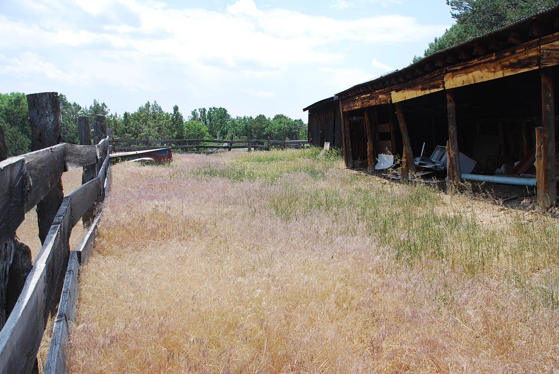933 Bear Paw Rd., Bear Paw Ranch Property Photo 49