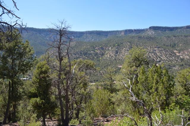 Indian Mesa Real Estate Listings Main Image