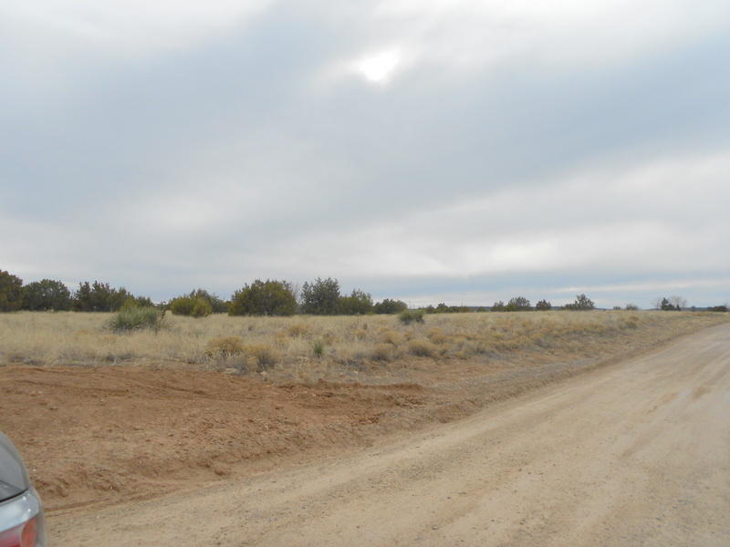 Park Road Property Photo