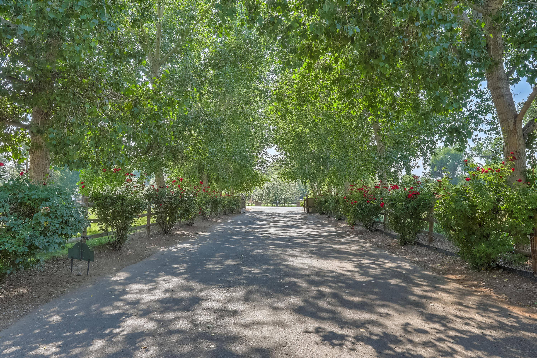 980 Bonita Rosas Road Nw Property Photo 11