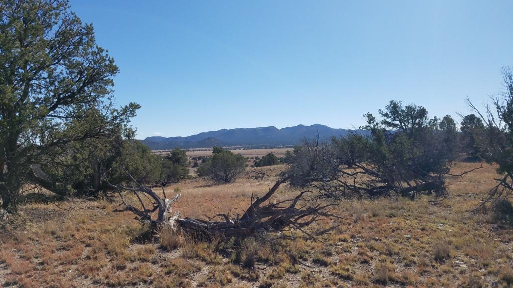 977 Greens Gap Road Property Photo