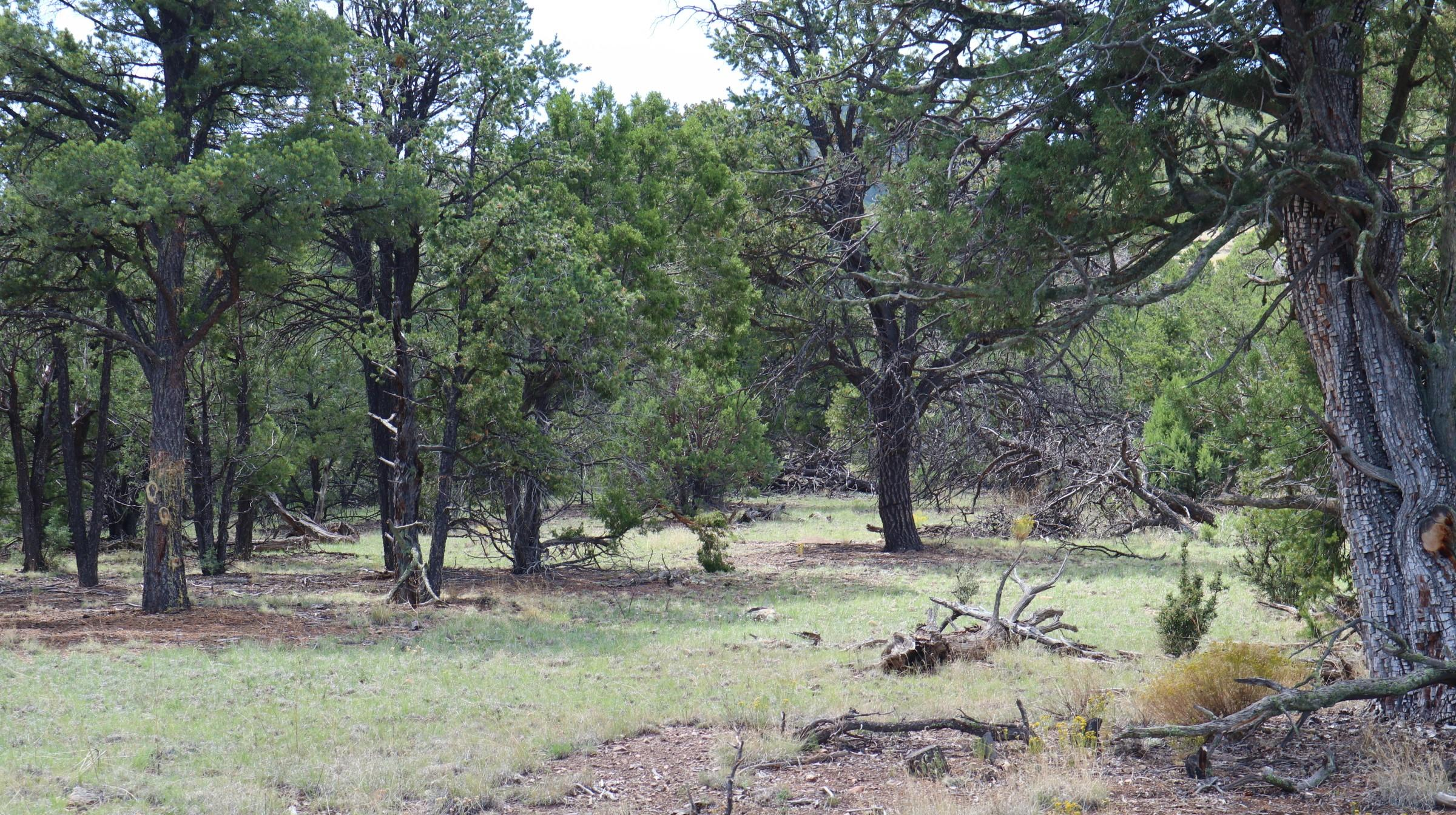 Lot 6,7 Wilderness Circle Property Photo