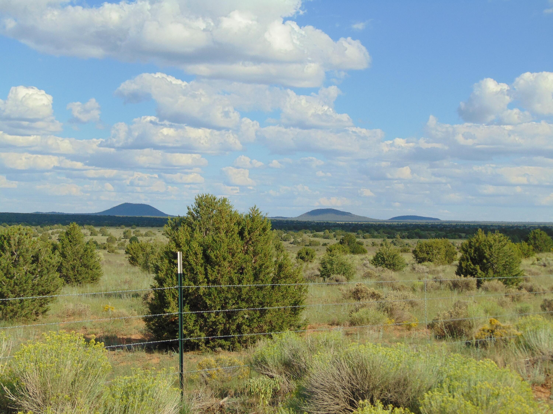 Galleta Ranch Property Photo 5