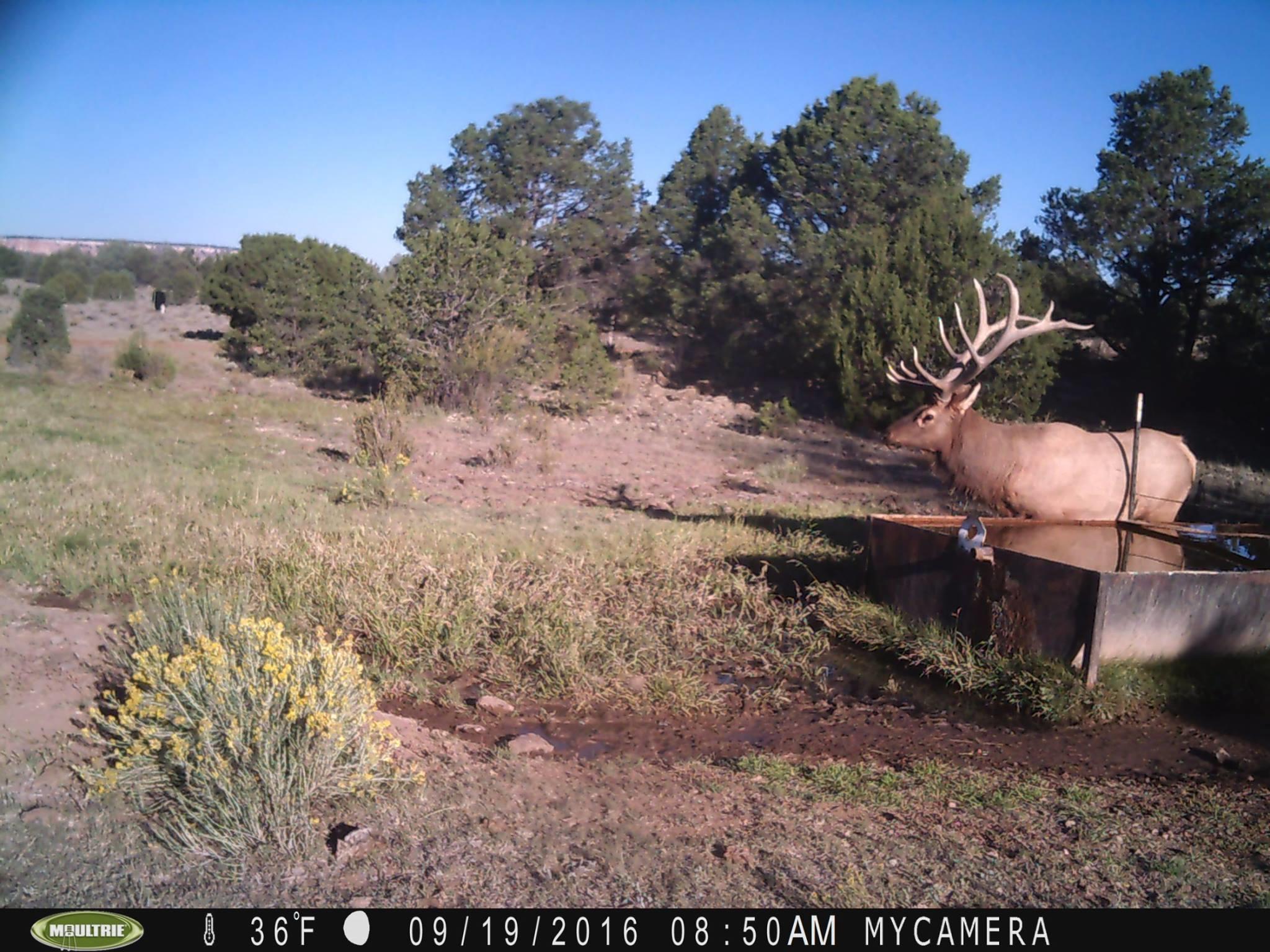 Galleta Ranch Property Photo 6