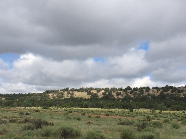 Galleta Ranch Property Photo 15