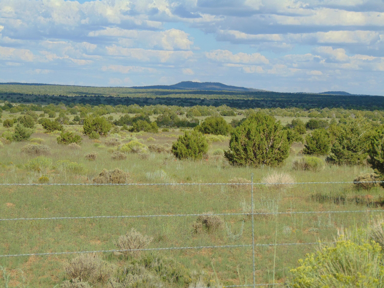 Galleta Ranch Property Photo 27