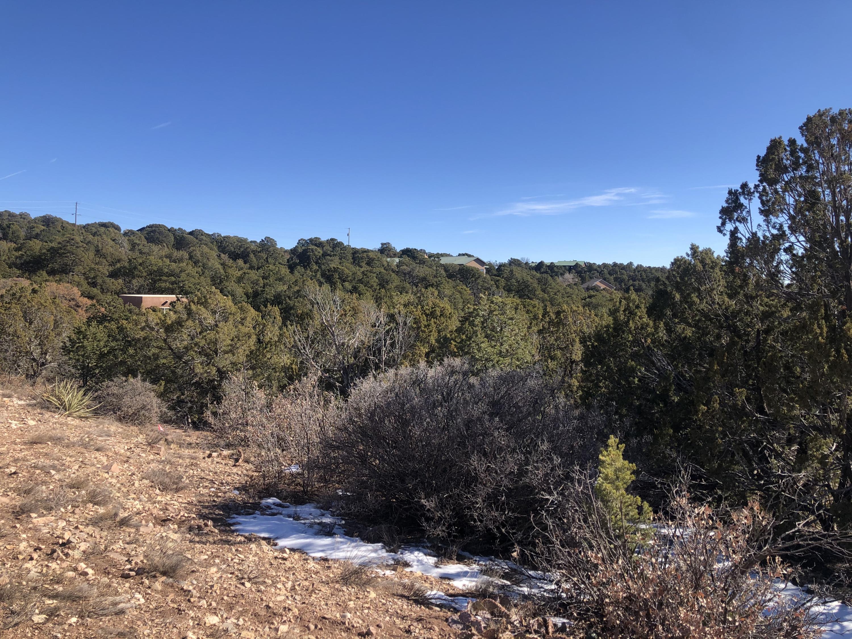 Pinon Heights Property Photo 4