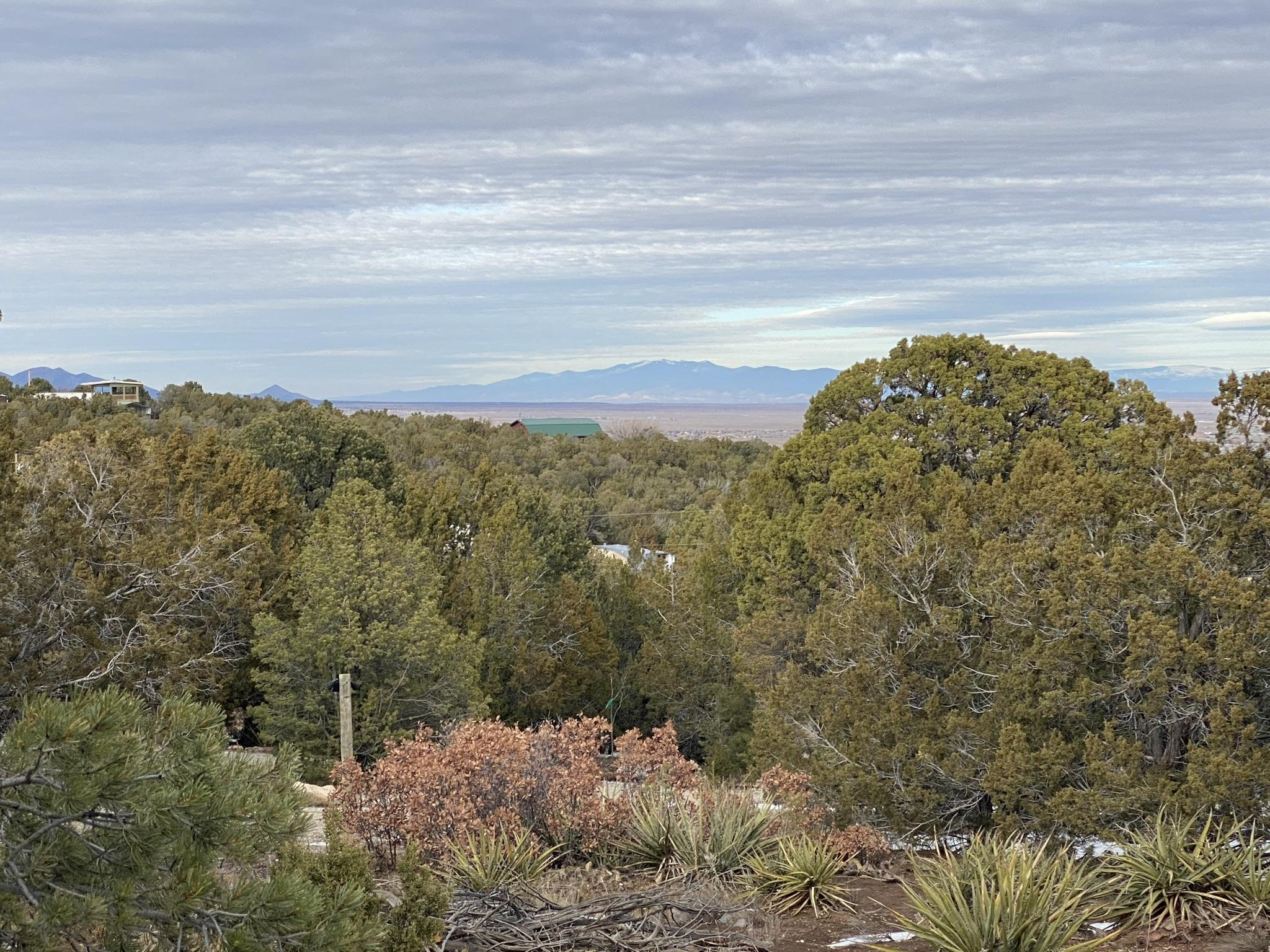 Lands Of Joyce White Real Estate Listings Main Image