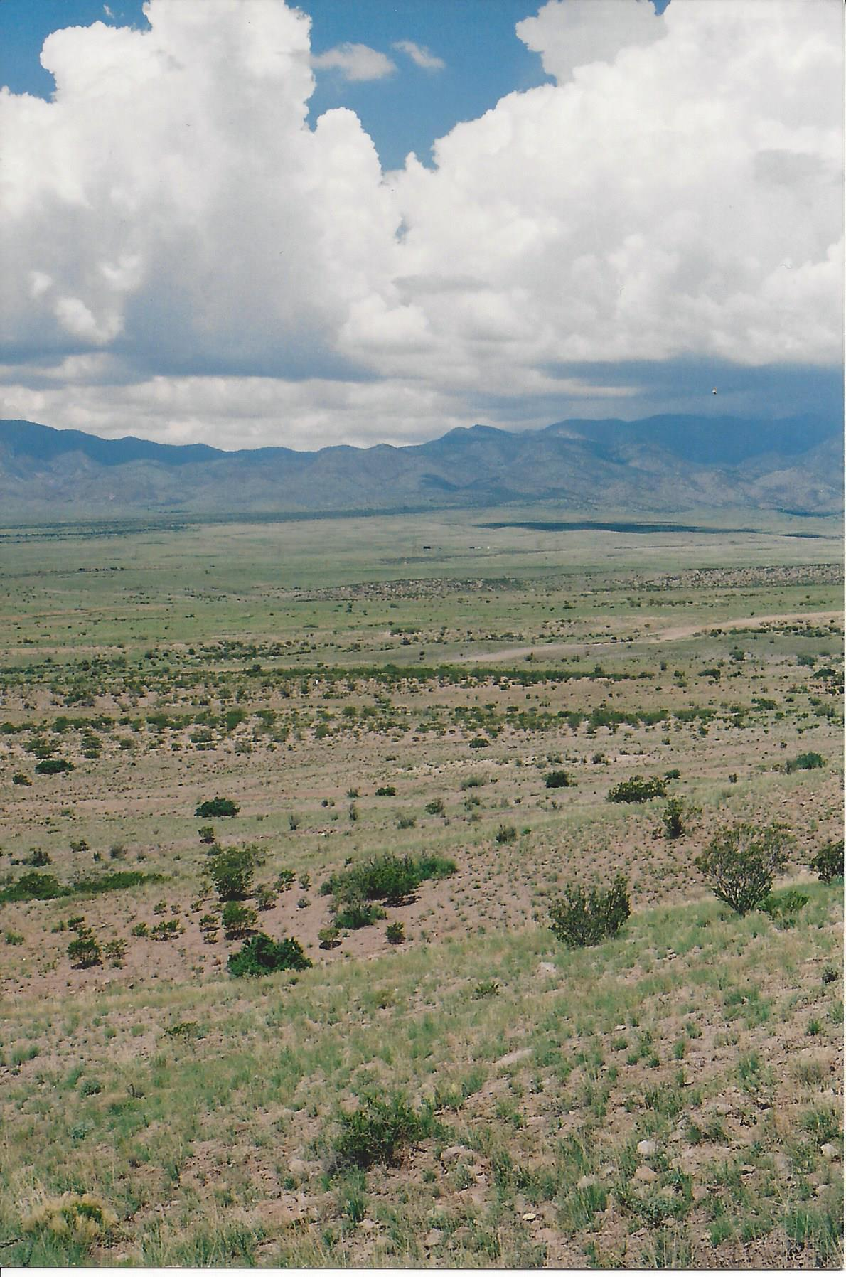 Willow Springs Ranch Lot: 35 Property Photo
