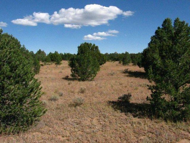 Tierra Verde Lands Property Photo