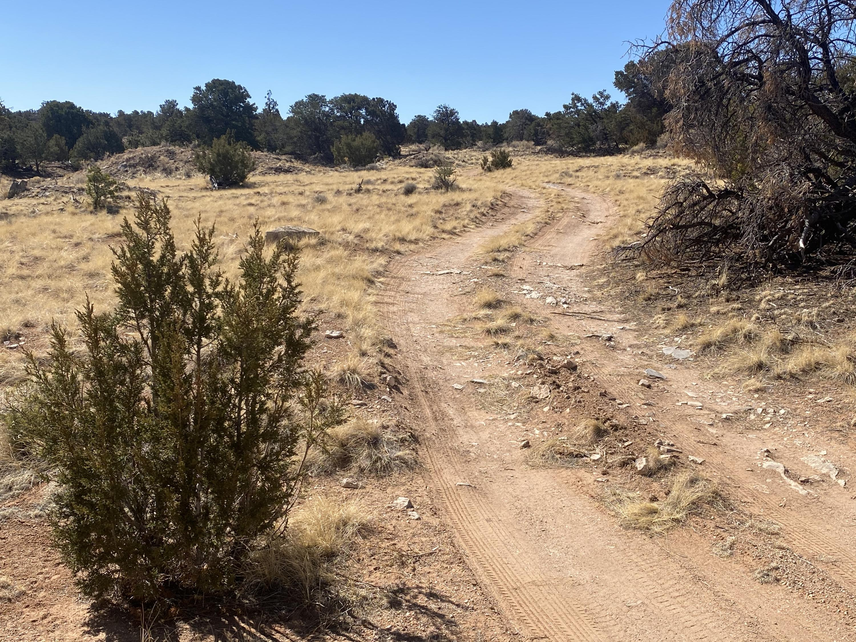 Lot 5 Eagle Rock Ranches Property Photo