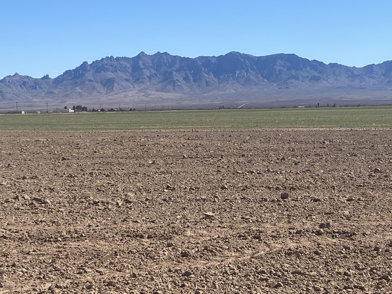Separ Hay & Cattle Farm Property Photo 1