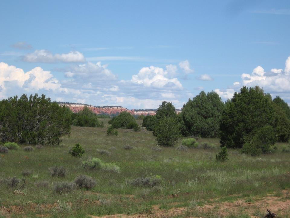 James Valley Ranch Tract 6 Property Photo 3