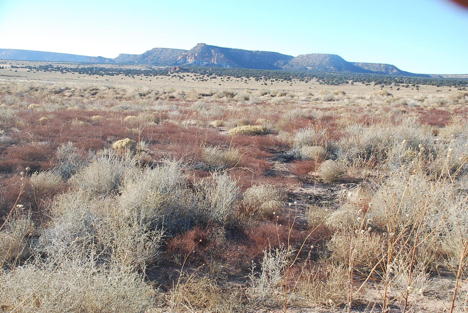 Lot 6 Chimney Rock Ranch Property Photo 5