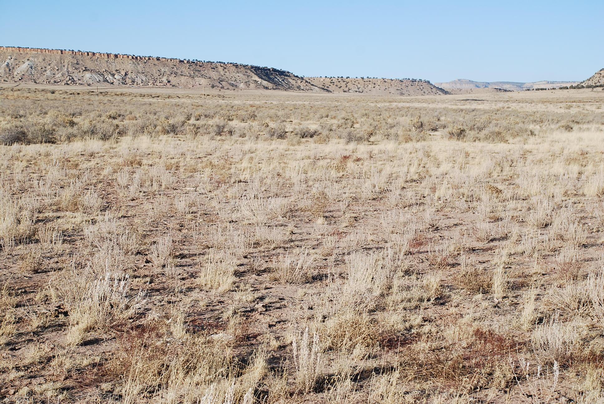 Lot 6 Chimney Rock Ranch Property Photo 6