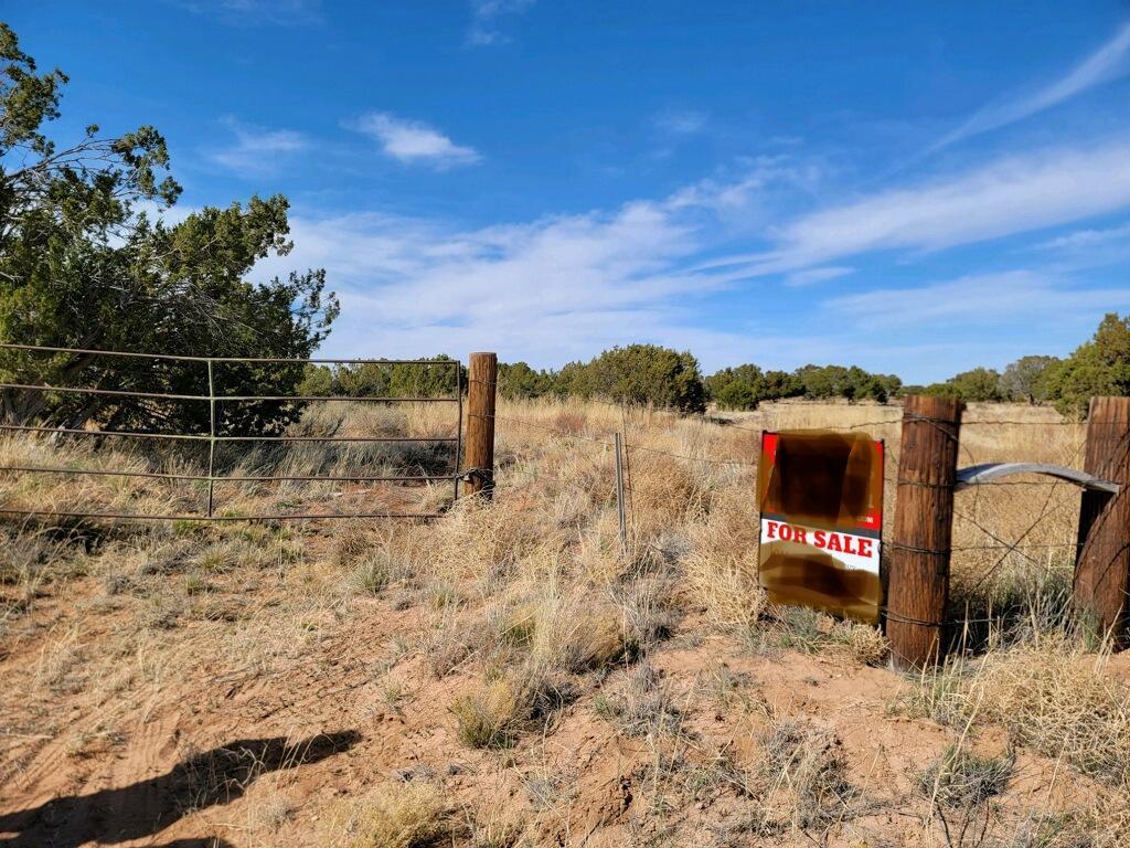 Outskirts Road Property Photo