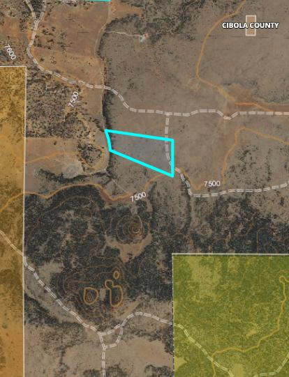 Tract 17 James Valley Ranch Property Photo 16