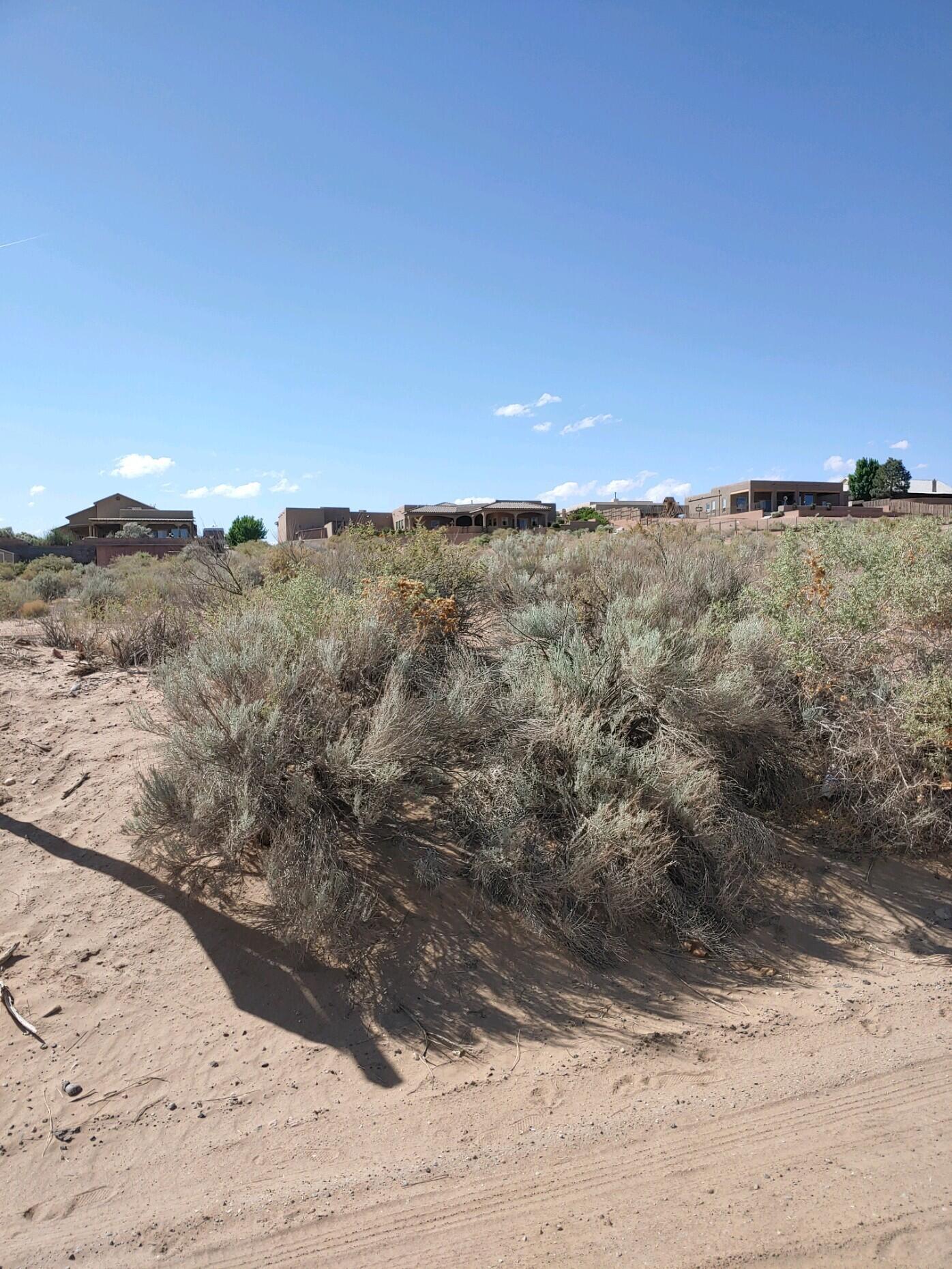 Lands Of Cuellar Real Estate Listings Main Image