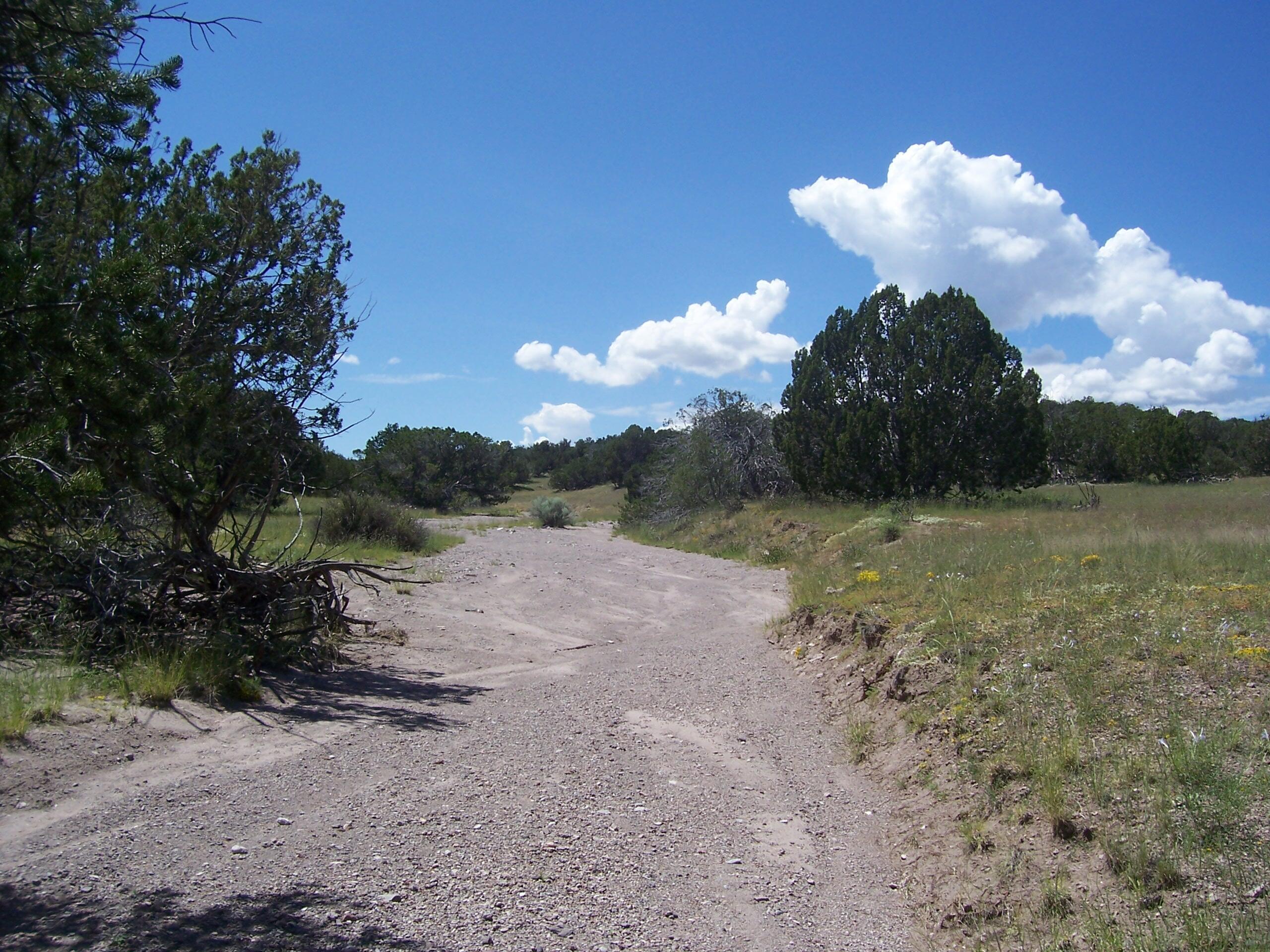 51 Camino Del Sueno Property Photo
