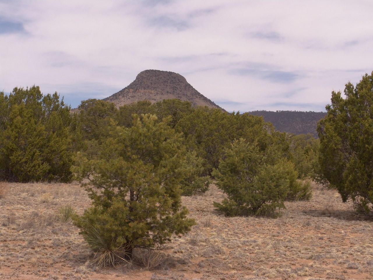 432 Southern Trail Property Photo