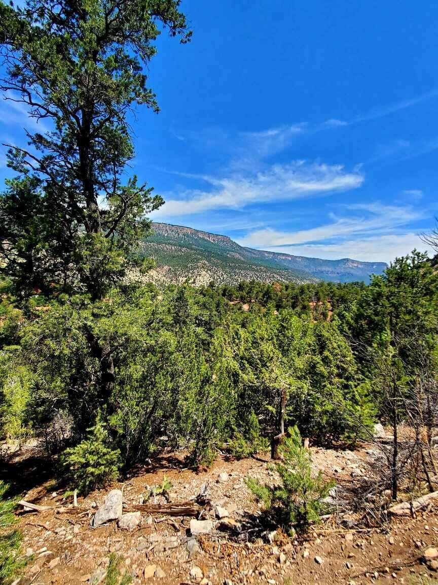 Lot C1 Indian Mesa Trail Property Photo