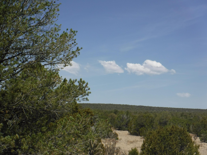 0 Dixon Road Property Photo 1