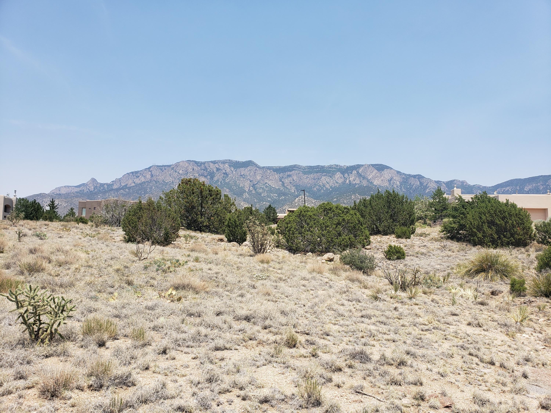 Mountain Highlands At High Desert Real Estate Listings Main Image
