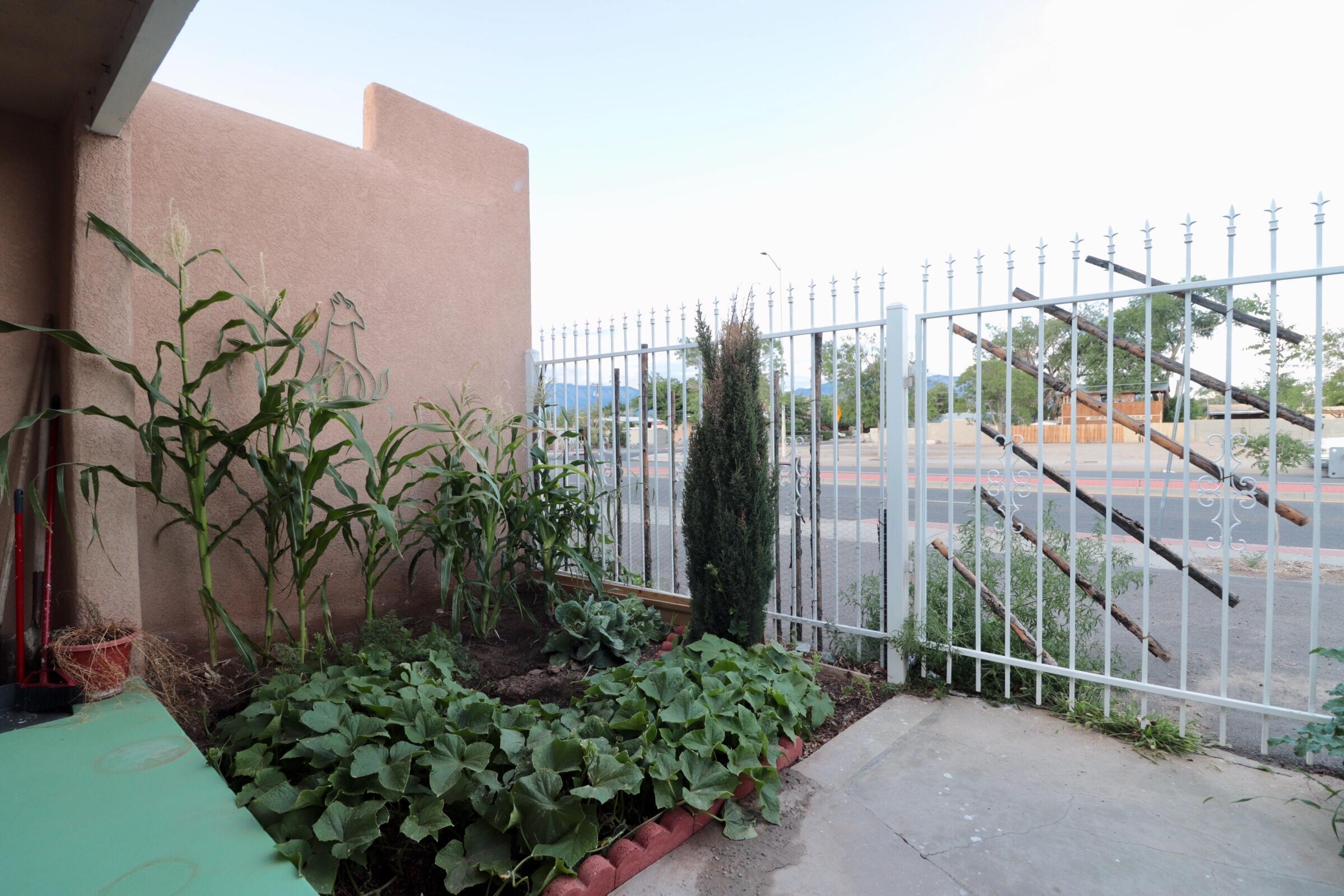 1007 San Mateo Boulevard Se Property Photo 31