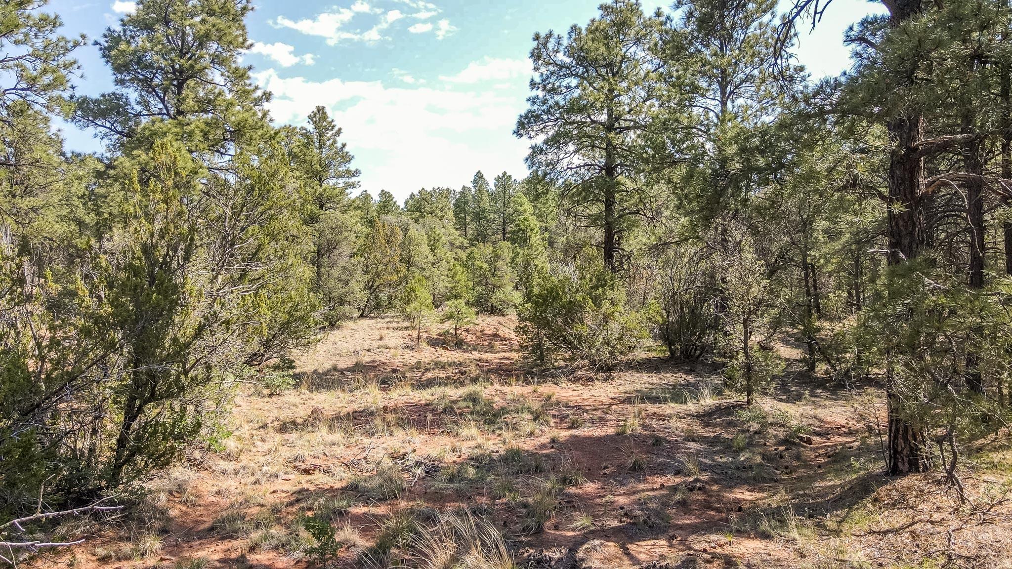 Santa Fe Trail Ranch Property Photo
