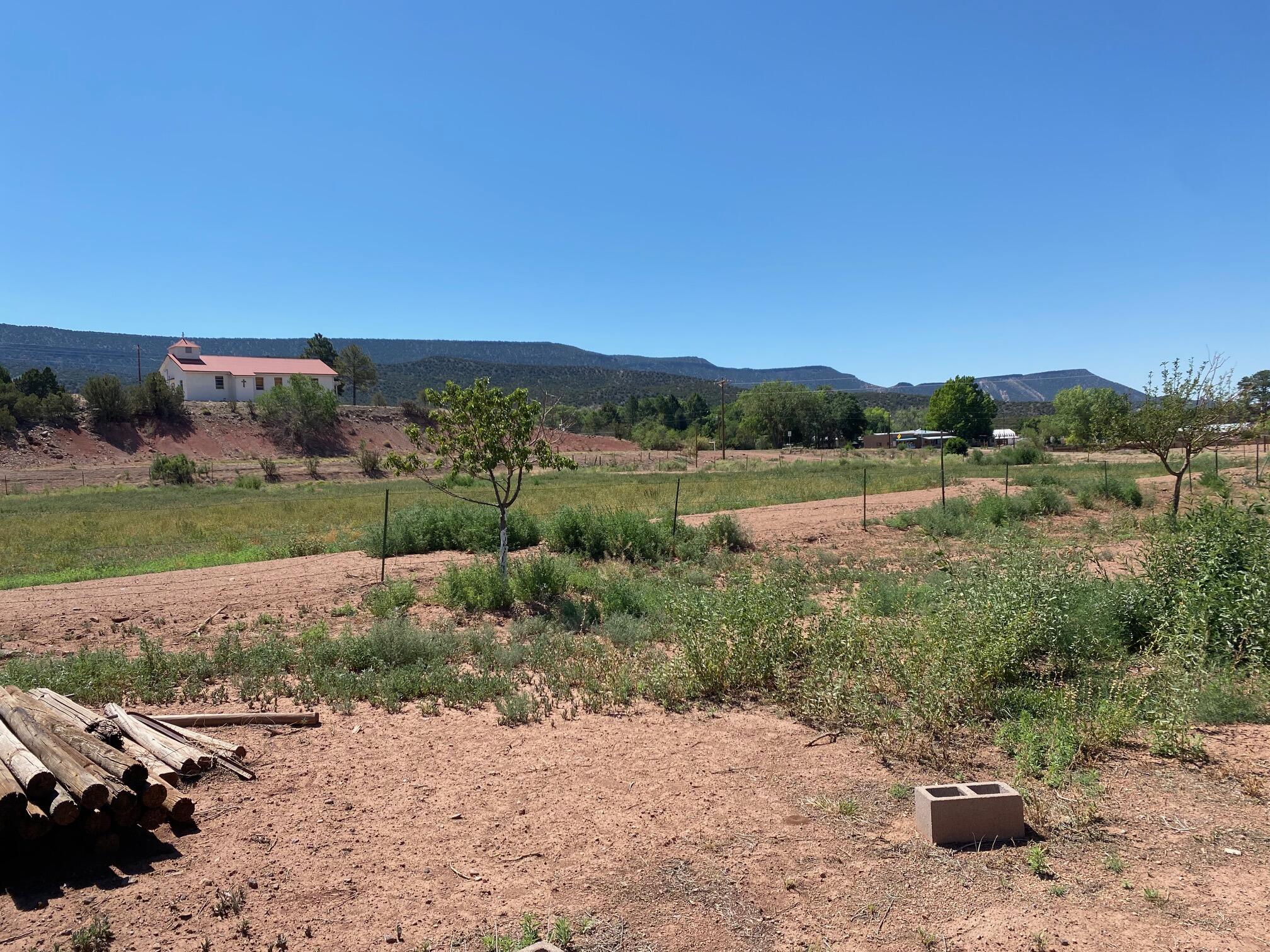 4625 Highway 290 Property Photo 12