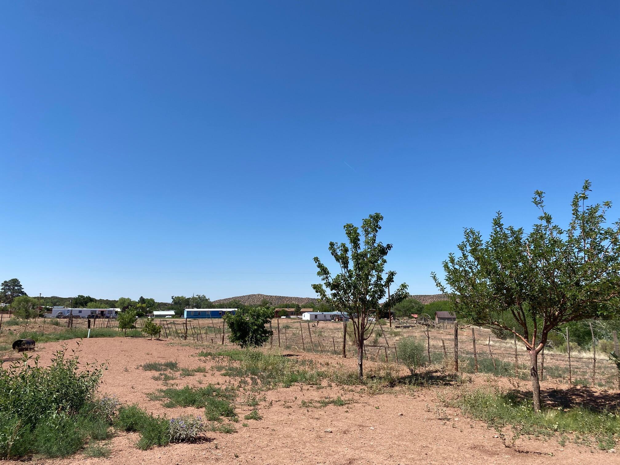 4625 Highway 290 Property Photo 13