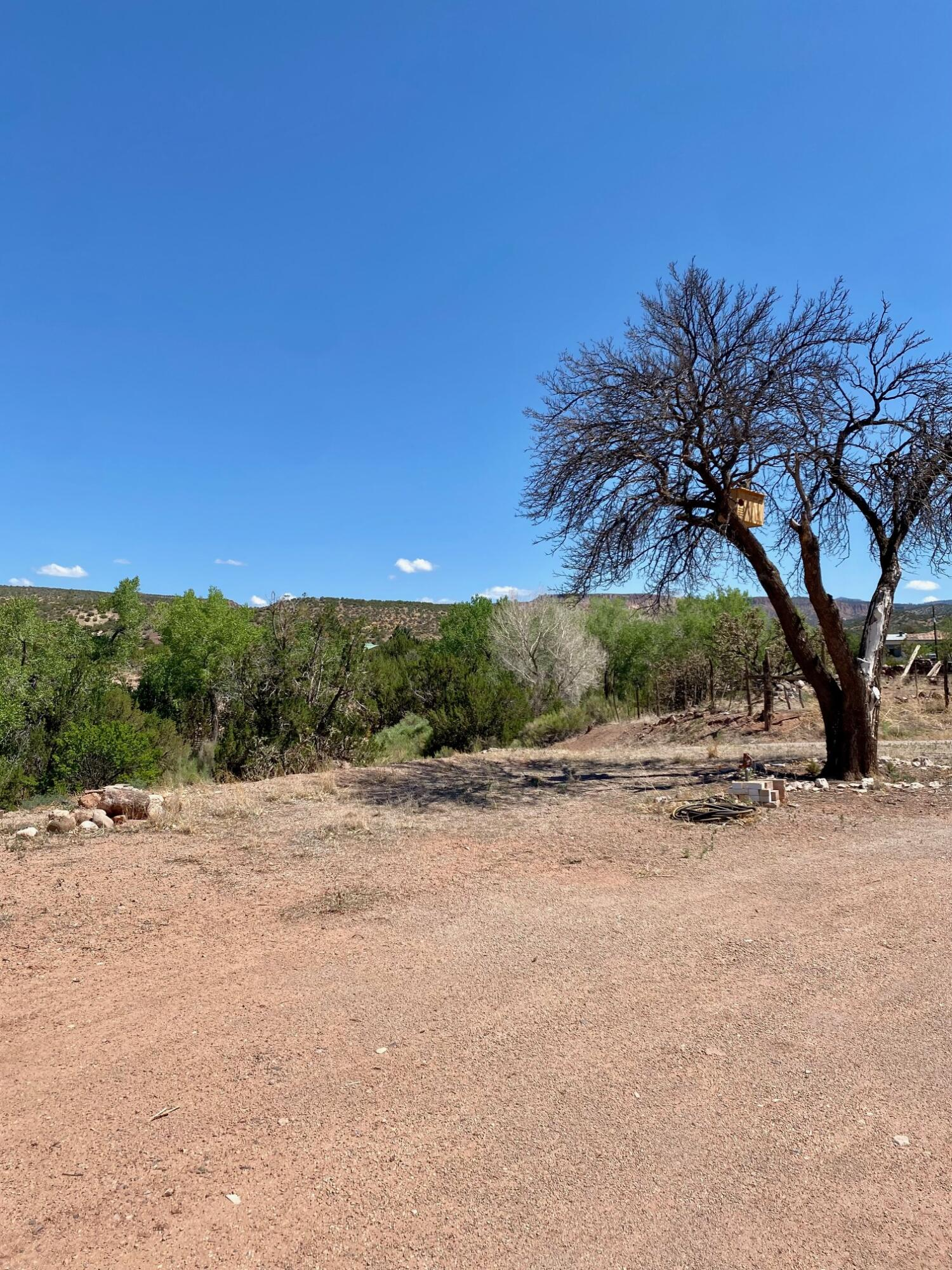 4625 Highway 290 Property Photo 14