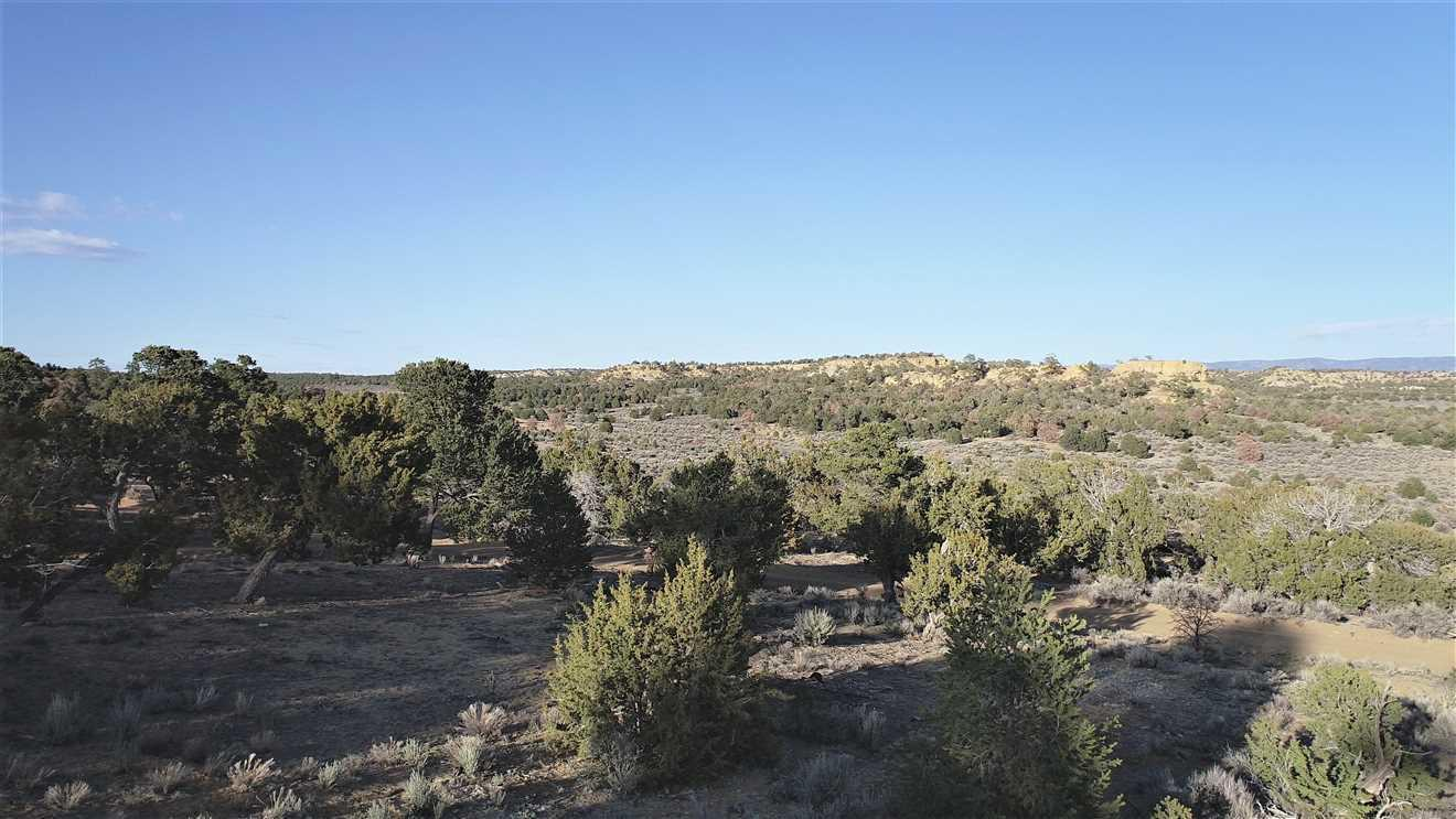 Contiental Divide Hunting Property Photo