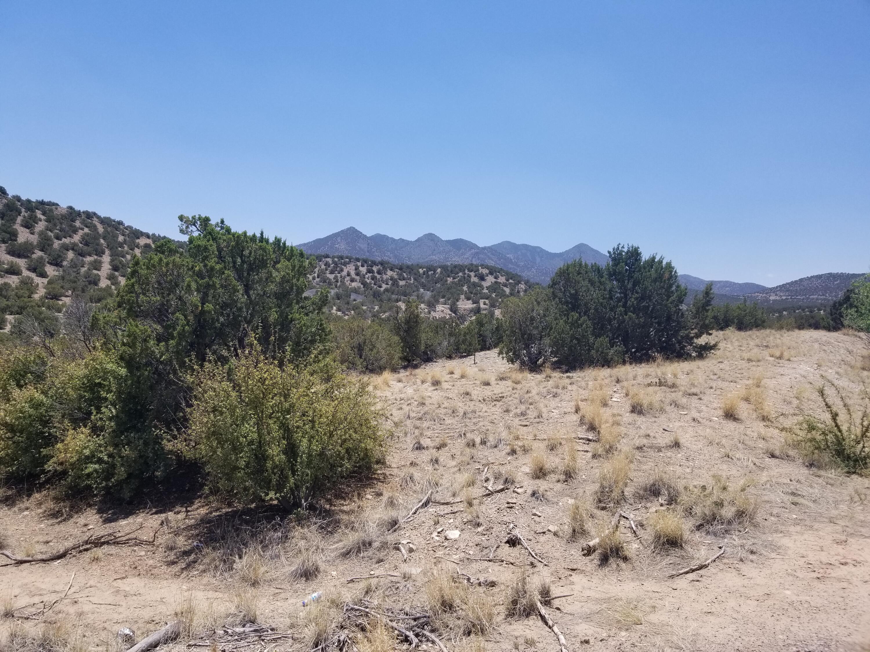 64 Wild Dog Road Property Photo