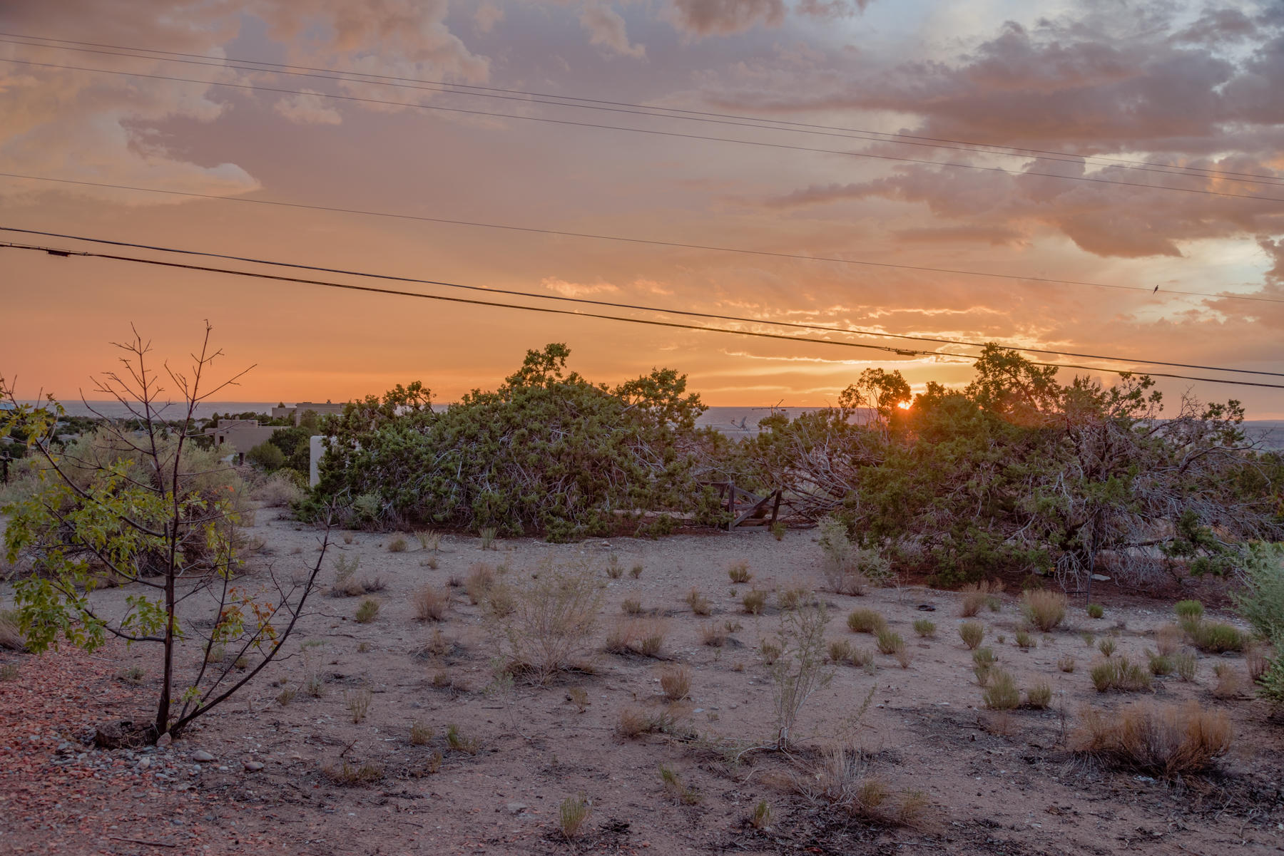 14 Yucca Place Property Photo 46