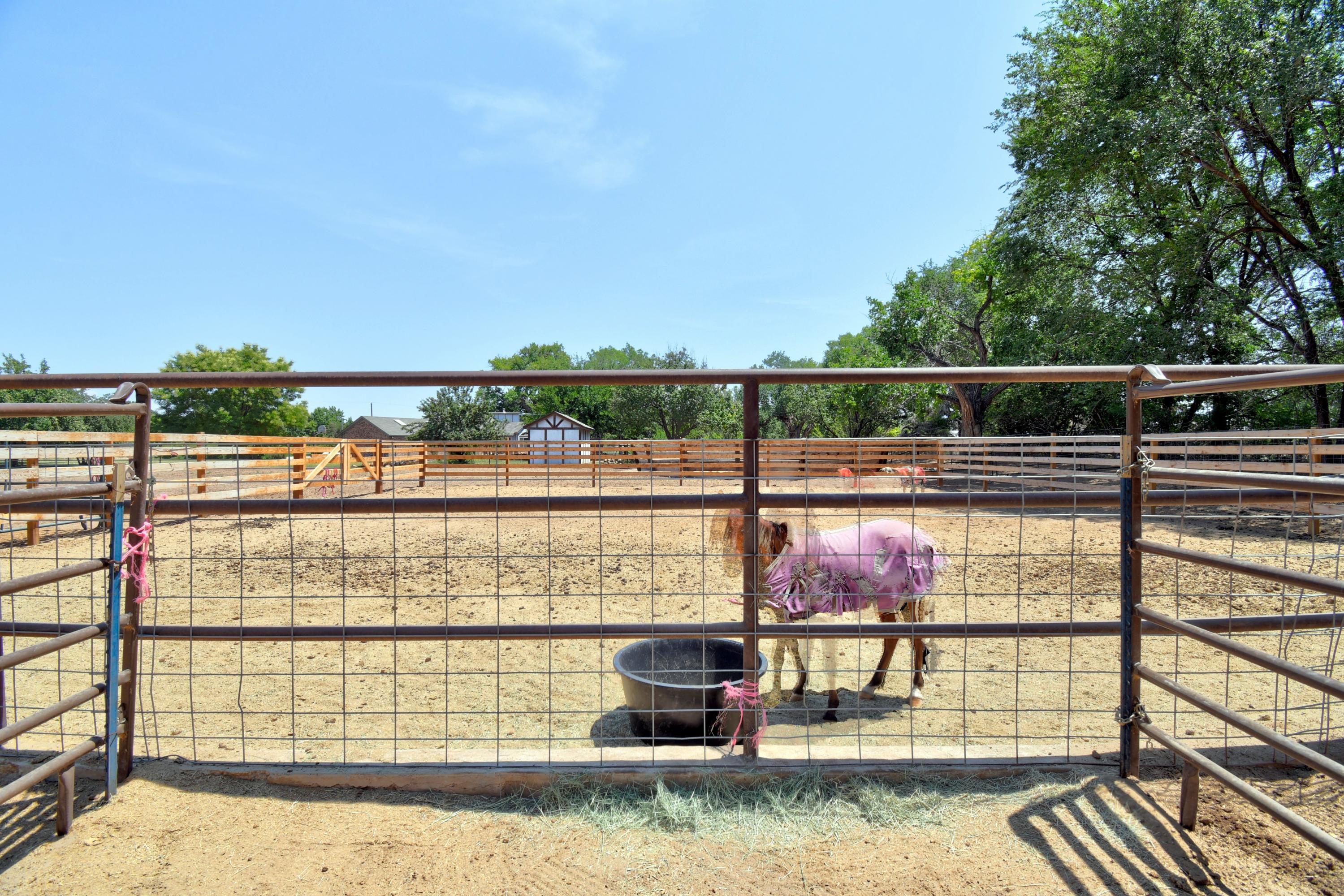 21 Coyote Road Property Photo 33