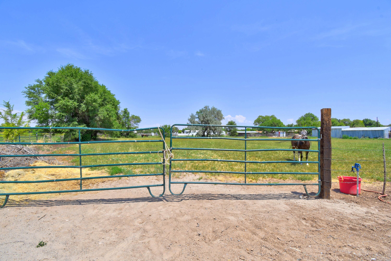 21 Coyote Road Property Photo 39