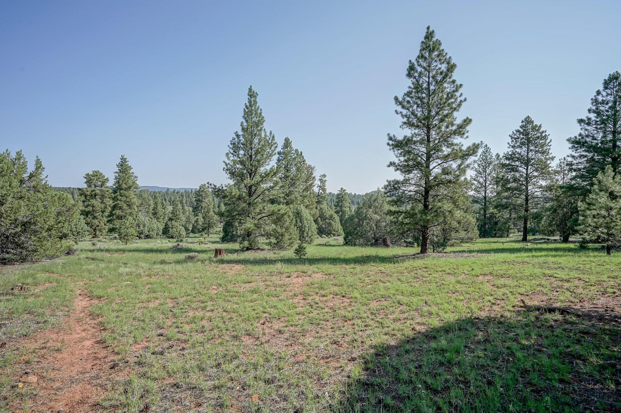 27 Cabin Ridge Road Property Photo 57