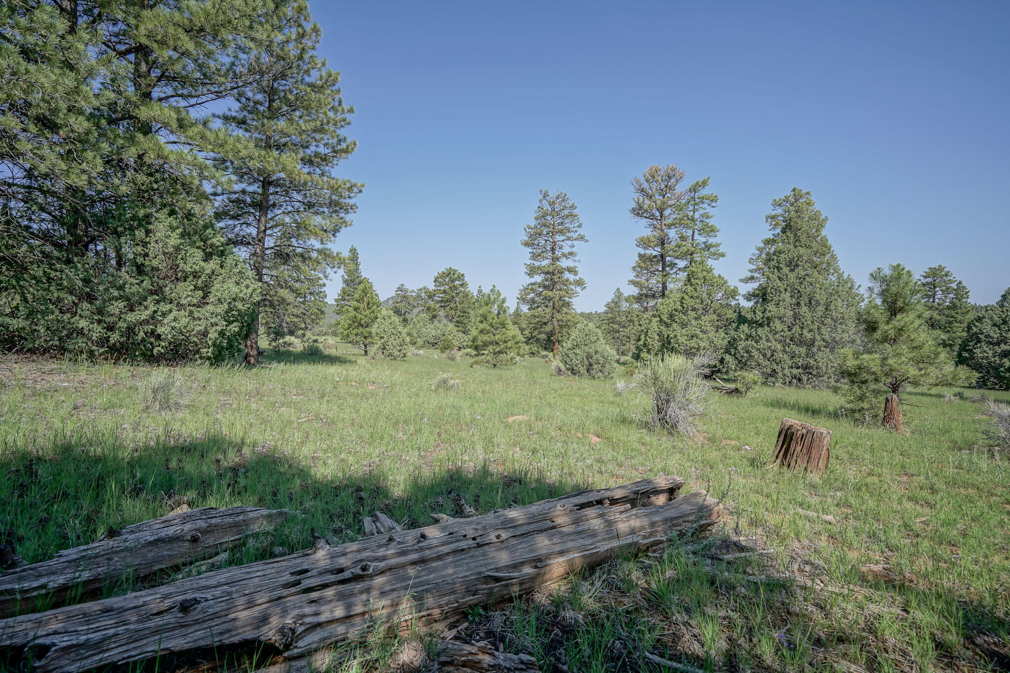 27 Cabin Ridge Road Property Photo 61