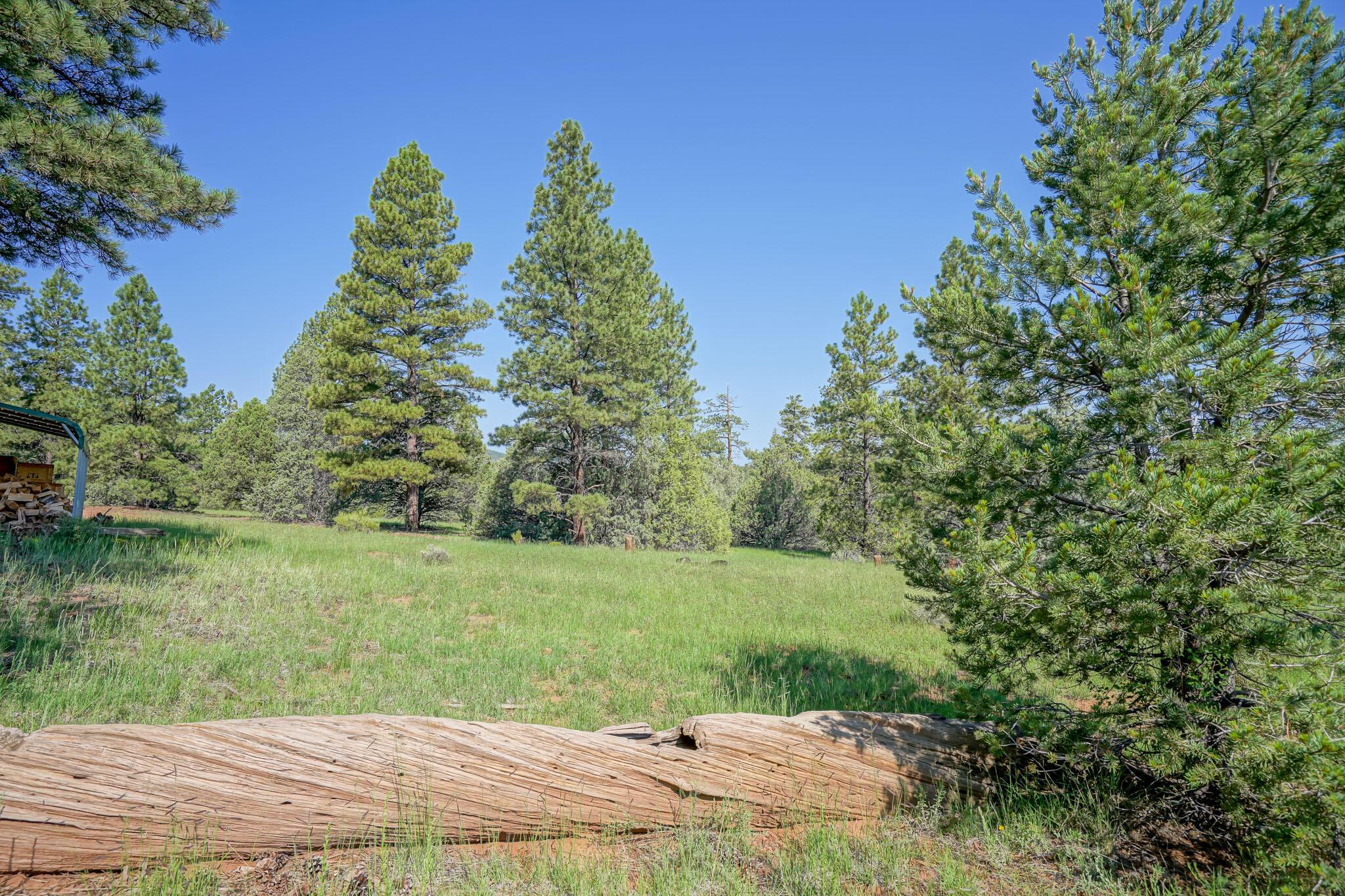 27 Cabin Ridge Road Property Photo 64