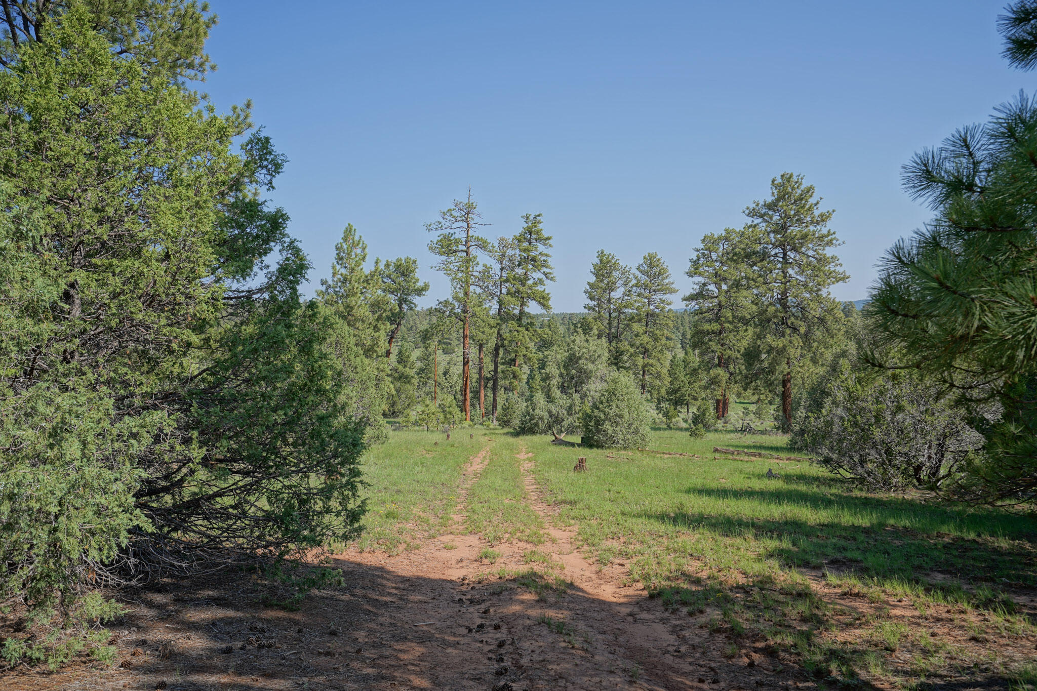 27 Cabin Ridge Road Property Photo 66